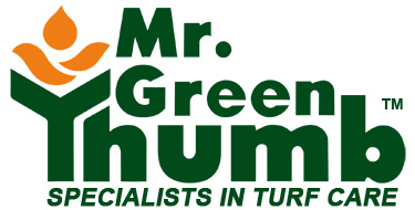 mr. green thumb johnson city tn